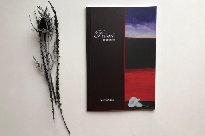 Pesniška zbirka Pesmi in pesmice